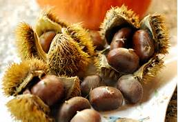 Chestnuts for eating, or a reminder for prayer!